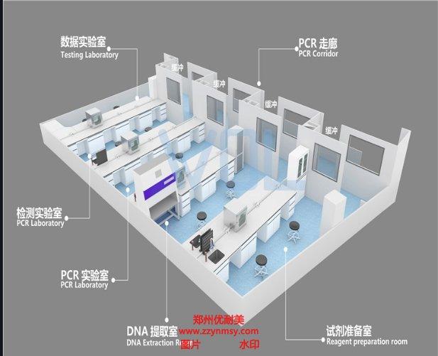 河南PCR实验室装修的标准规范有哪些?